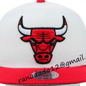 Chicago Bulls Mitchell and Ness NBA XL Logo Snapback Cap