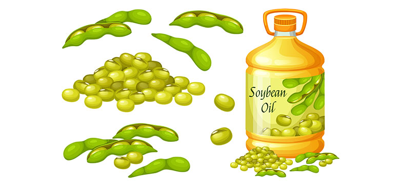 Soybean-Oil-Manufacturer-in-Bangladesh-And-Its-Aspects